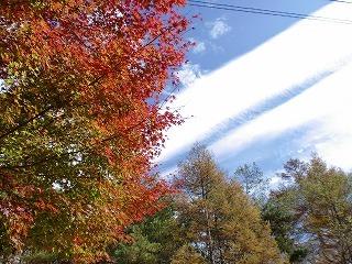 2011.10.23~24 ランチツー 131.jpg