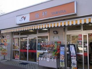 2011,2,26 河津桜 001.jpg