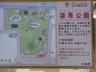 2011,2,26 河津桜 067.jpg