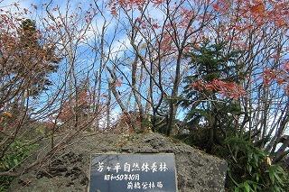 2012.10.13~14 長野ドライブ 204.jpg