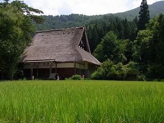 2012.8.9~10 飛騨高山&白川郷 CX 088.jpg