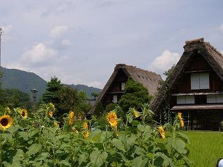 2012.8.9~10 飛騨高山&白川郷 CX 101.jpg