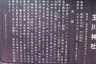 2013.1.5 011.jpg