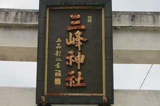 園2012.9.5 ダリア 009.jpg