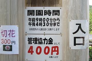 園2012.9.5 ダリア 025.jpg